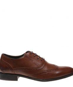 Pantofi barbati Aster maro